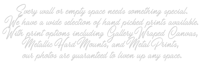 Every wall or empty space needs something special. We have a wide selection of hand picked prints available. With print options including Gallery Wraped Canvas, Metallic Hard Mounts, and Metal Prints, our photos are guaranteed to liven up any space.